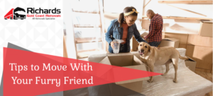 Tips to Move With Your Furry Friend