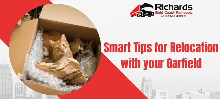 safely-relocate-pet-cat
